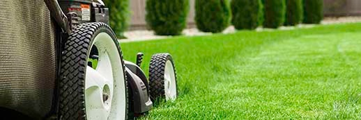 NH Landscaping Insurance