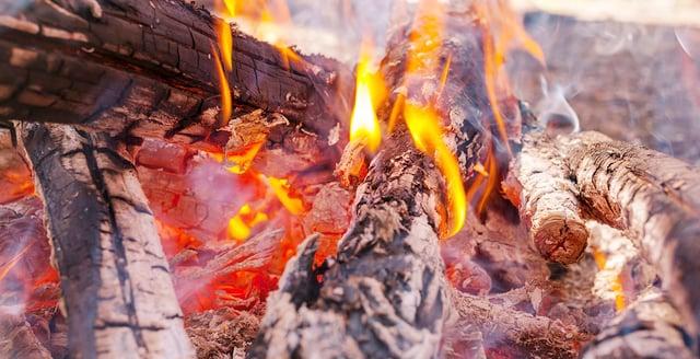 burning brush.jpg