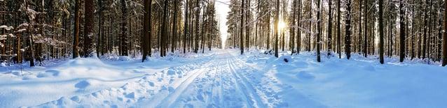 Skiing in NH