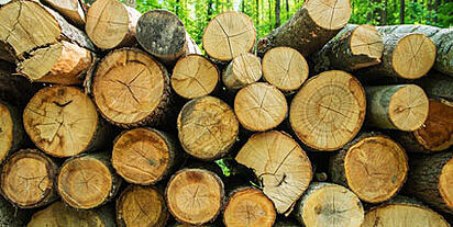 NH Lumber Insurance